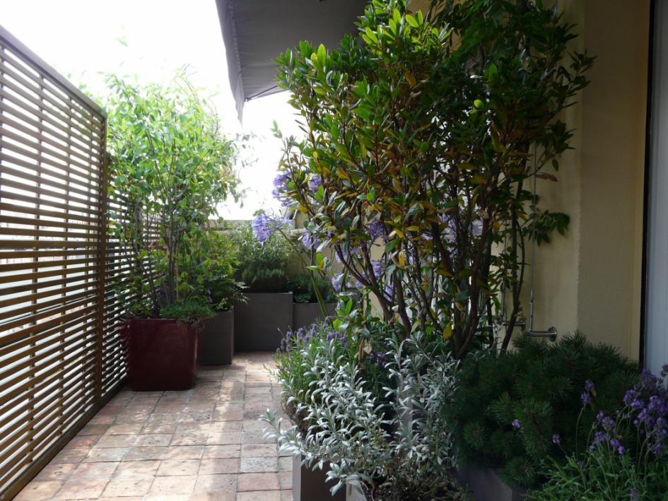 Jardin Urbain Cairos Architecture Et Paysage